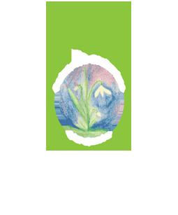 Pedagogia Steineriana Vergante – Lago Maggiore